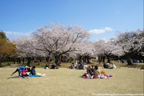 03Apr13 Okayama 005