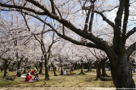 03Apr13 Okayama 006