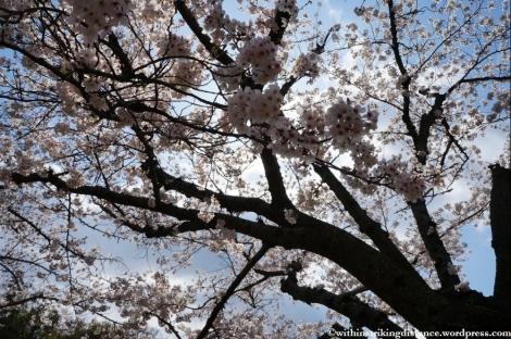 03Apr13 Okayama 010
