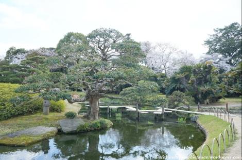 03Apr13 Okayama 013