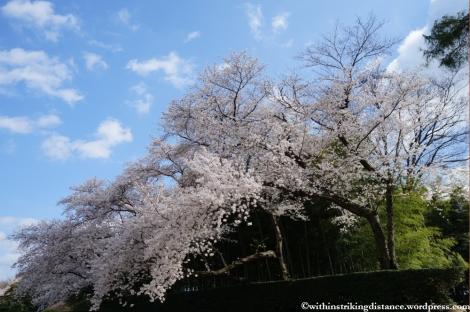 03Apr13 Okayama 020