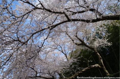 03Apr13 Okayama 021