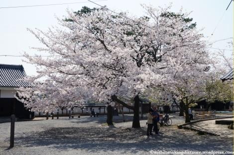 04Apr13 Matsue 006