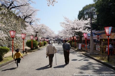 05Apr13 Tsuyama 004