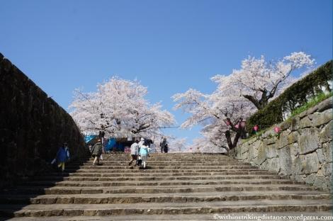 05Apr13 Tsuyama 006