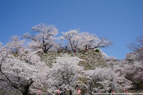 05Apr13 Tsuyama 007