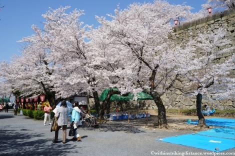 05Apr13 Tsuyama 008