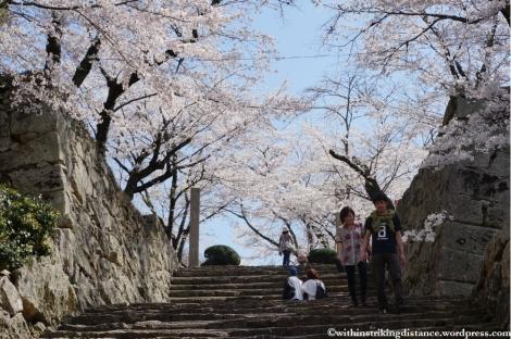 05Apr13 Tsuyama 011