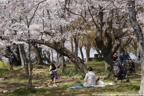 05Apr13 Tsuyama 013