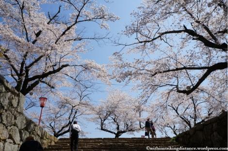 05Apr13 Tsuyama 015