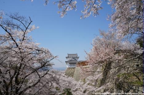 05Apr13 Tsuyama 017