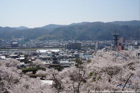 05Apr13 Tsuyama 020