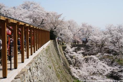 05Apr13 Tsuyama 028