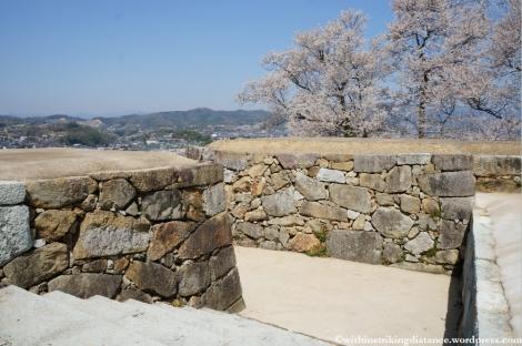 05Apr13 Tsuyama 034