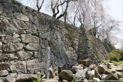 05Apr13 Tsuyama 046