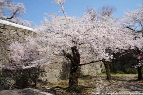 05Apr13 Tsuyama 048
