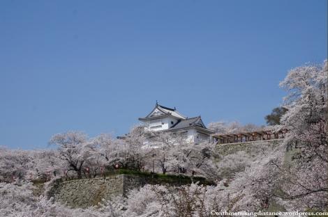 05Apr13 Tsuyama 049