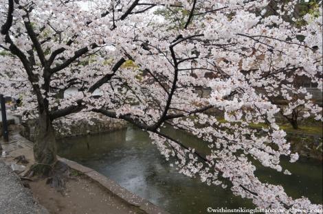 Trip Report 02Apr13 Kurashiki Himeji 005