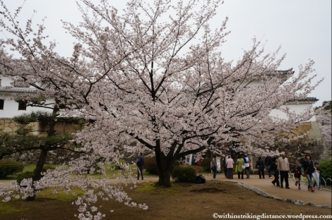 Trip Report 02Apr13 Kurashiki Himeji 021