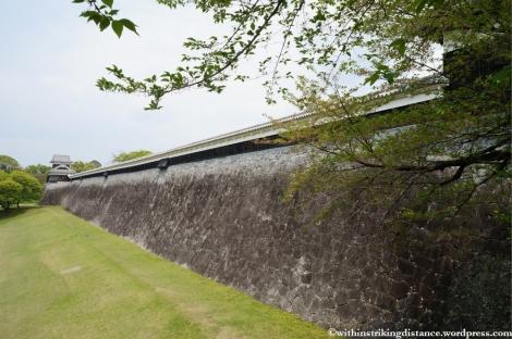 09Apr13 Kumamoto 071