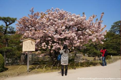 11Apr13 Kyoto Part 1 016