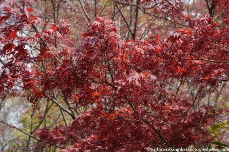 11Apr13 Kyoto Part 1 044