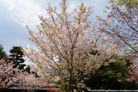 11Apr13 Kyoto Part 1 055