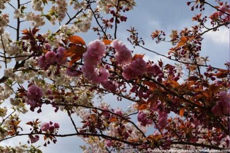 11Apr13 Kyoto Part 1 058