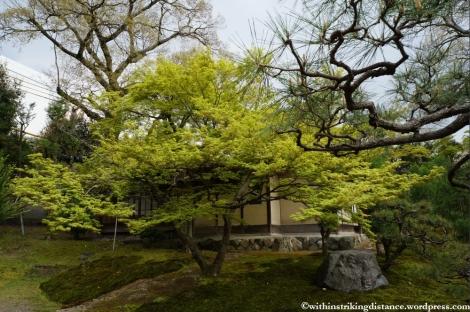11Apr13 Kyoto Part 3 017