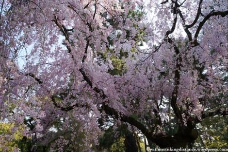 12Apr13 Kyoto Part 1 003