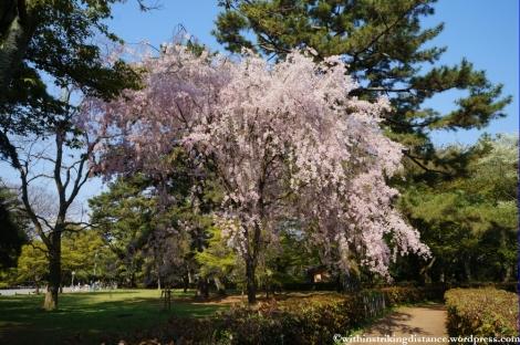 12Apr13 Kyoto Part 1 005