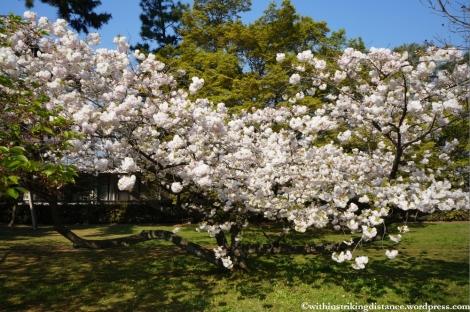 12Apr13 Kyoto Part 1 008