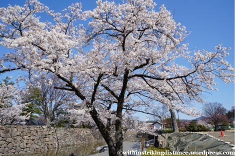 13Apr13 Matsumoto 035