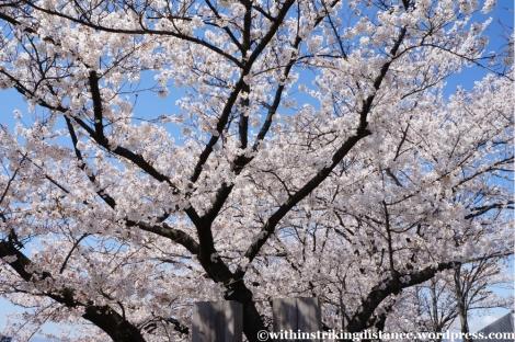 13Apr13 Matsumoto 043
