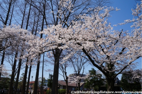 13Apr13 Matsumoto 054