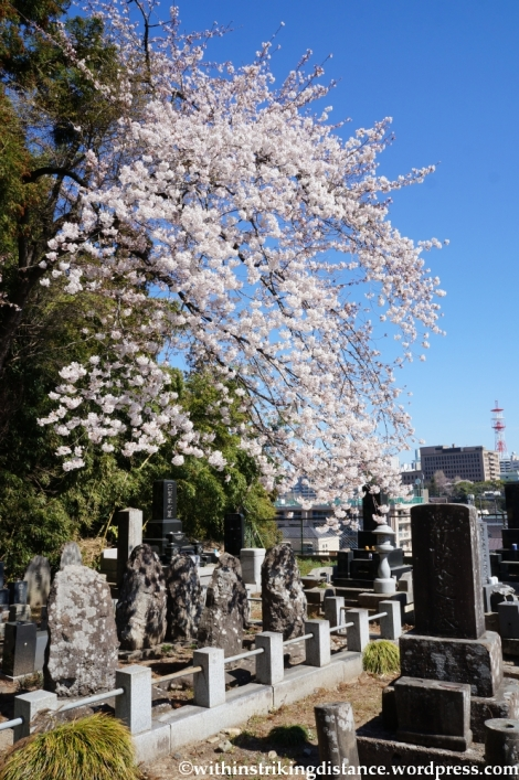 15Apr13 Sendai 018