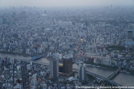 15Apr13 Tokyo 008
