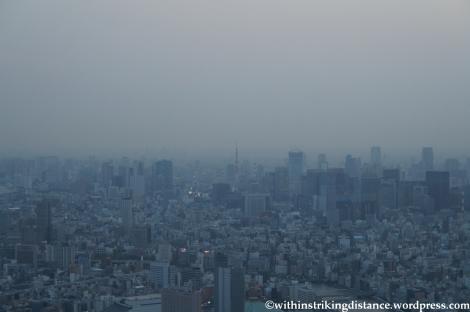 15Apr13 Tokyo 009