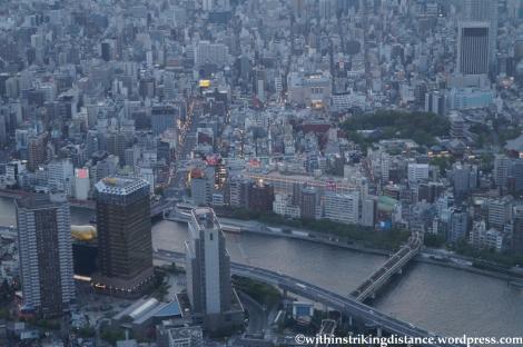 15Apr13 Tokyo 011