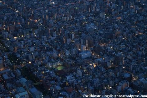 15Apr13 Tokyo 019