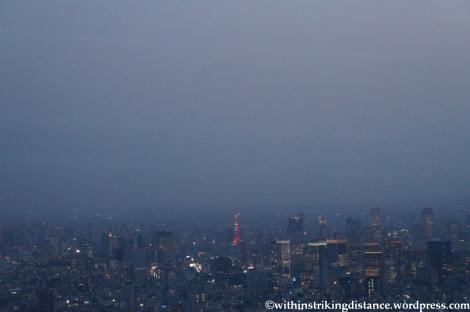 15Apr13 Tokyo 022