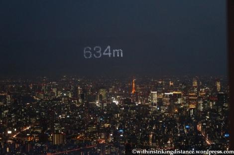 15Apr13 Tokyo 027
