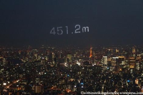 15Apr13 Tokyo 030