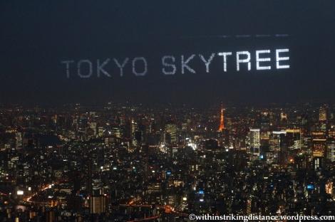 15Apr13 Tokyo 031