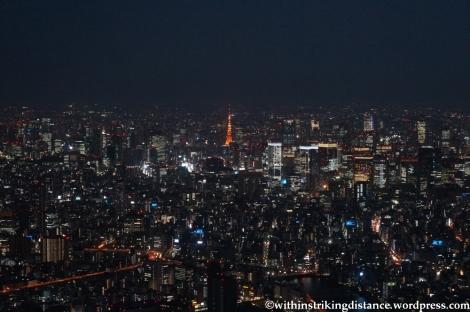 15Apr13 Tokyo 034
