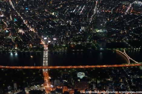 15Apr13 Tokyo 038