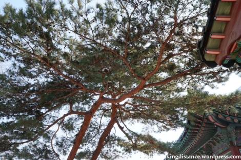 10Feb13 Seoul Gyeongbokgung 041
