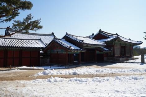 11Feb13 Seoul Changgyeonggung 034