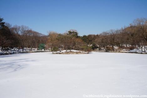 11Feb13 Seoul Changgyeonggung 048