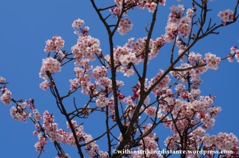 03Feb14 Atami MOA Museum of Art 002